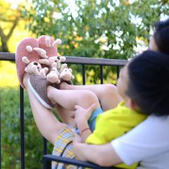 荐!棉拖鞋-卡通玩偶小熊款亲子包跟棉拖P511